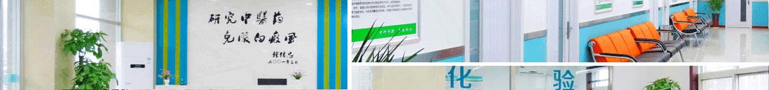 烟台半岛白癜风医院-烟台半岛最好最专业的白癜风专科医院